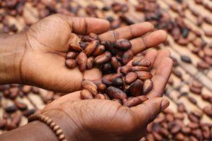 coffee-beans-origins